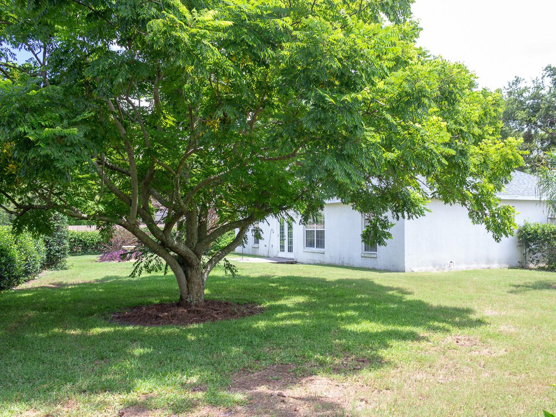 35308 Maple Leaf Drive, Fruitland Park, FL 34371 (111 of 36)