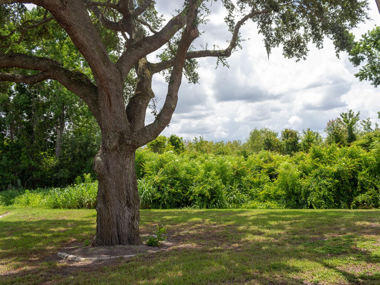 35308 Maple Leaf Drive, Fruitland Park, FL 34371 (112 of 36)