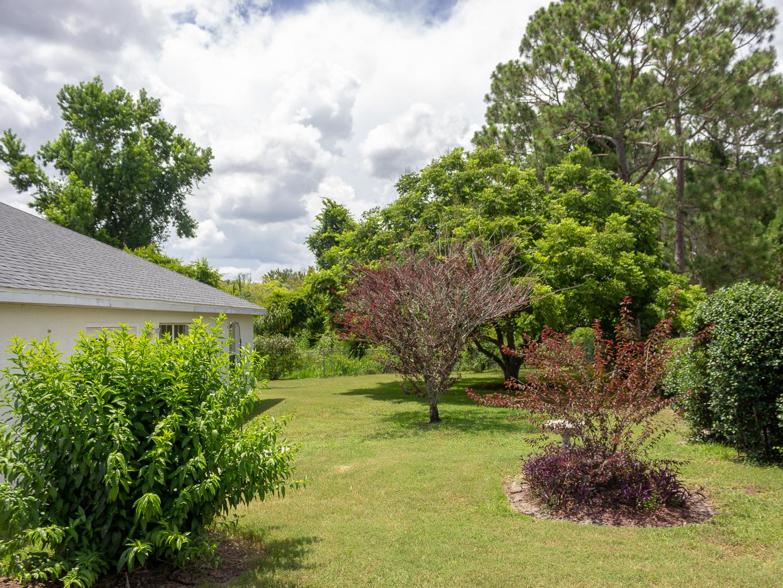 35308 Maple Leaf Drive, Fruitland Park, FL 34371 (115 of 36)