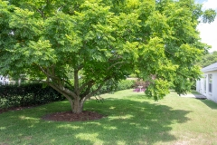 35308 Maple Leaf Drive, Fruitland Park, FL 34371 (110 of 36)