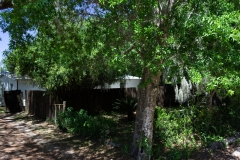 4675 SE 161st Terrace-large-040-2-4650 SE 162nd Court Exterior-1334x1000-72dpi