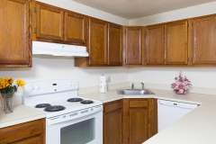 Kitchen Photos-227