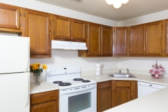 Kitchen Photos-228